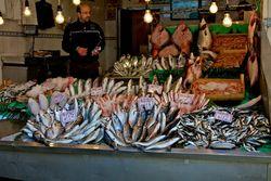 FishMarket in Istanbul