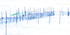 Venetian nets