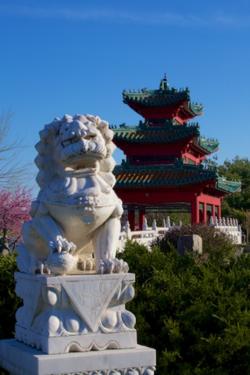 Chinese Dog guarding Chinese Pagoda