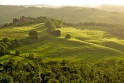 Tuscany, Countryside 317 - Version 3.web