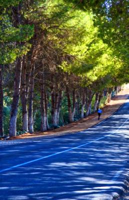 Road in Morocco copy